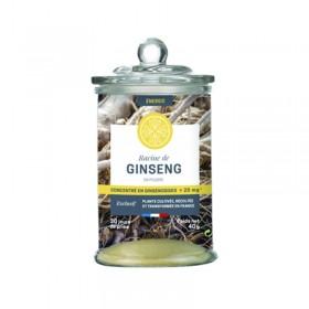 Ginseng blanc en poudre - JARDINS D'OCITANIE